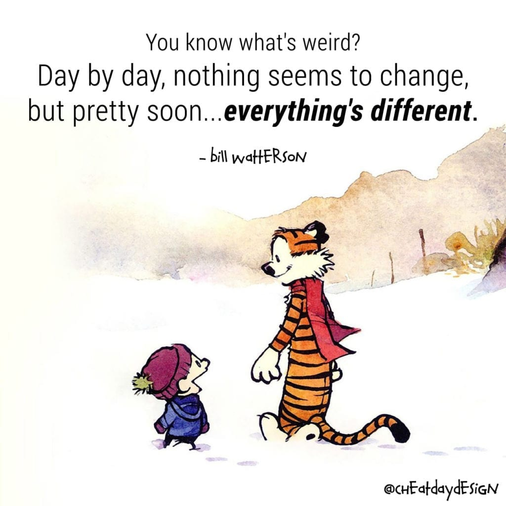 Calvin and Hobbes life motivation