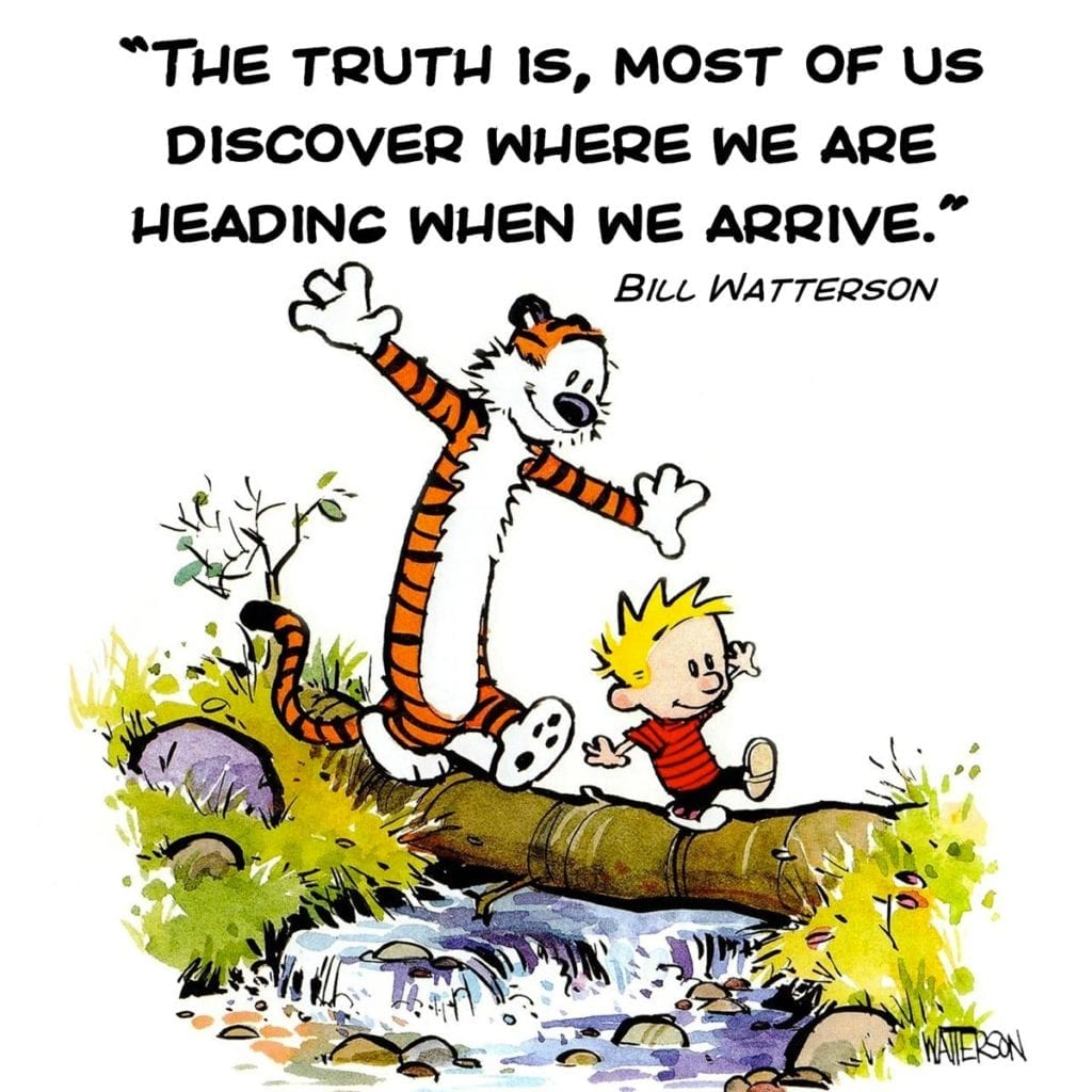 Calvin & Hobbes life motivation