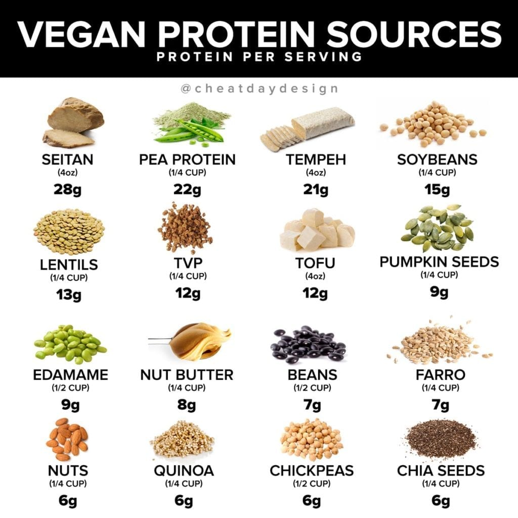 Best Sources of vegan protein