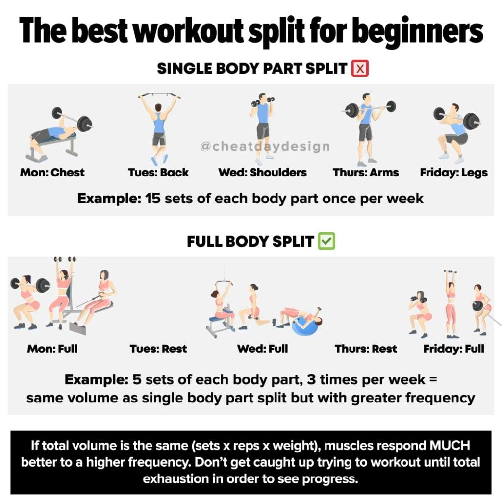 Best workout split for beginners