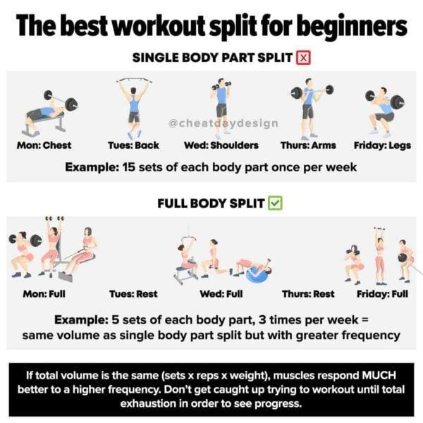 Best workout split for beginners