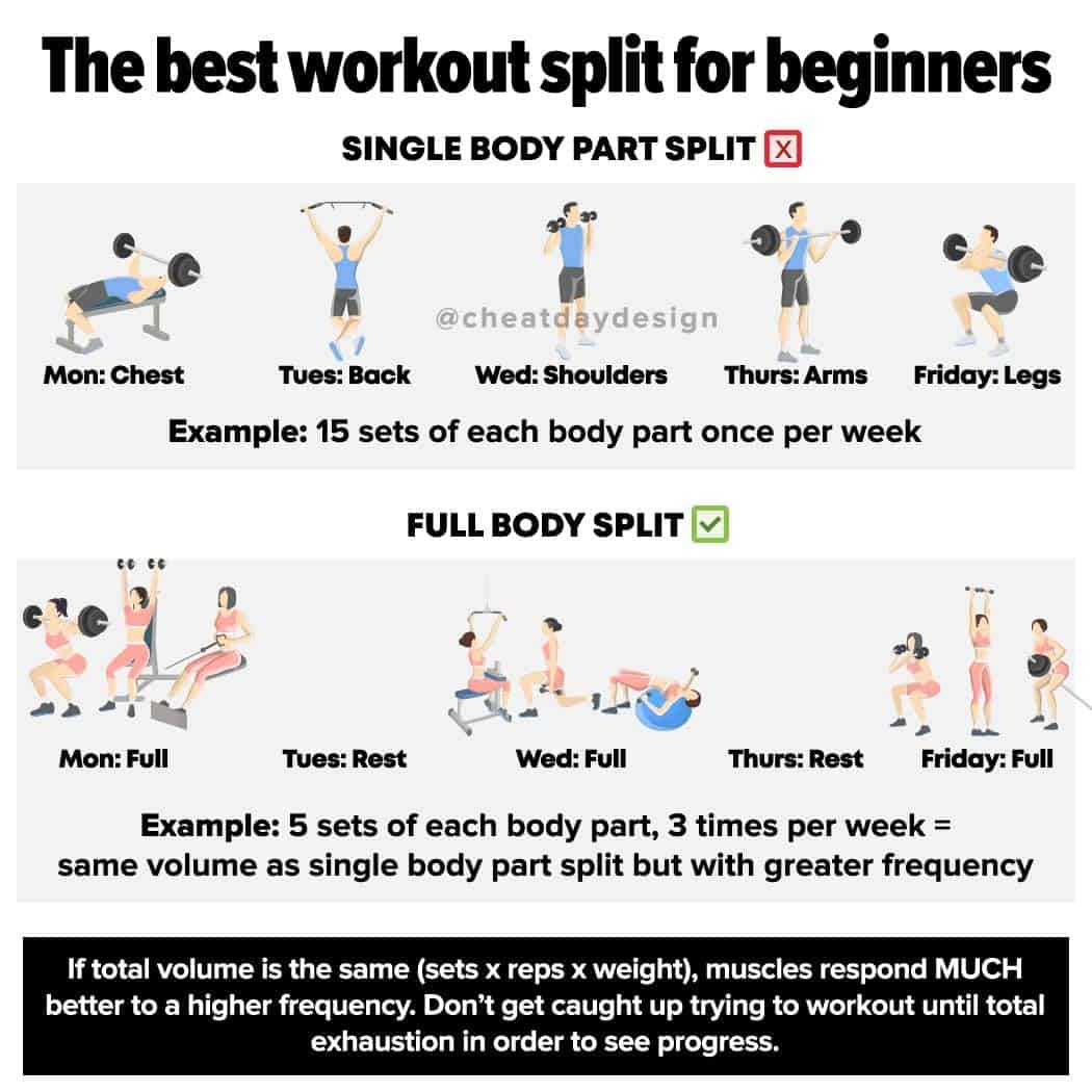 The Best Workout Split for Beginners