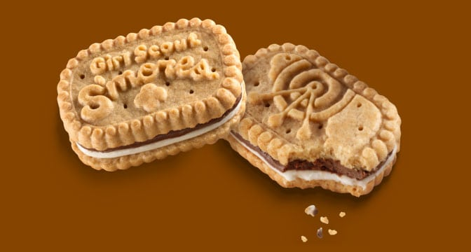 ABC Bakers Girl Scout S'mores